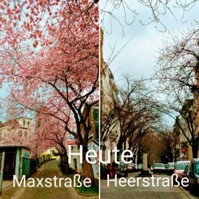 Vergleich Max-und Heerstraße