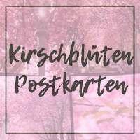 Kirschblüten-Postkarten