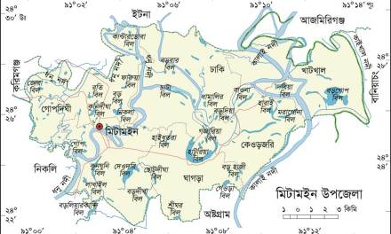 মিটামইন উপজেলা