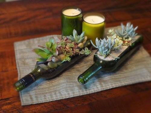 Succulents-in-garden-ideas-24