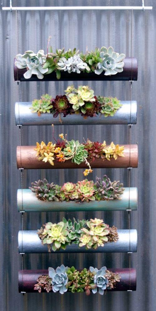 succulent plant decor idea 10