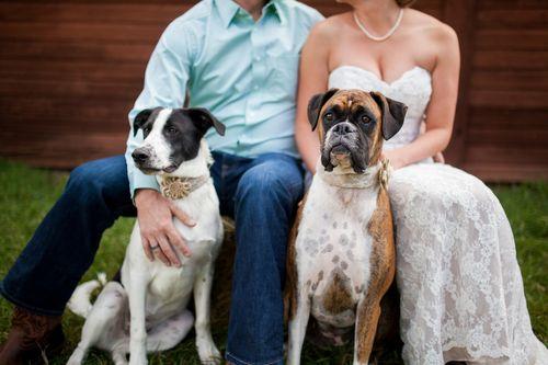 Miriah and Craig's DIY Barn Wedding in the Colorado Mountains || Urban Safari Photography
