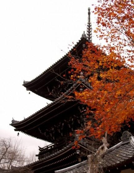 [Photolog] 2012年12月 京都の紅葉
