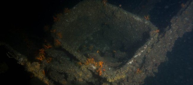 第6回戦艦陸奥レックダイビング@瀬戸内海柱島沖