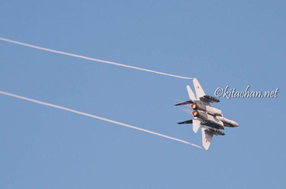 F-15 アグレッサー