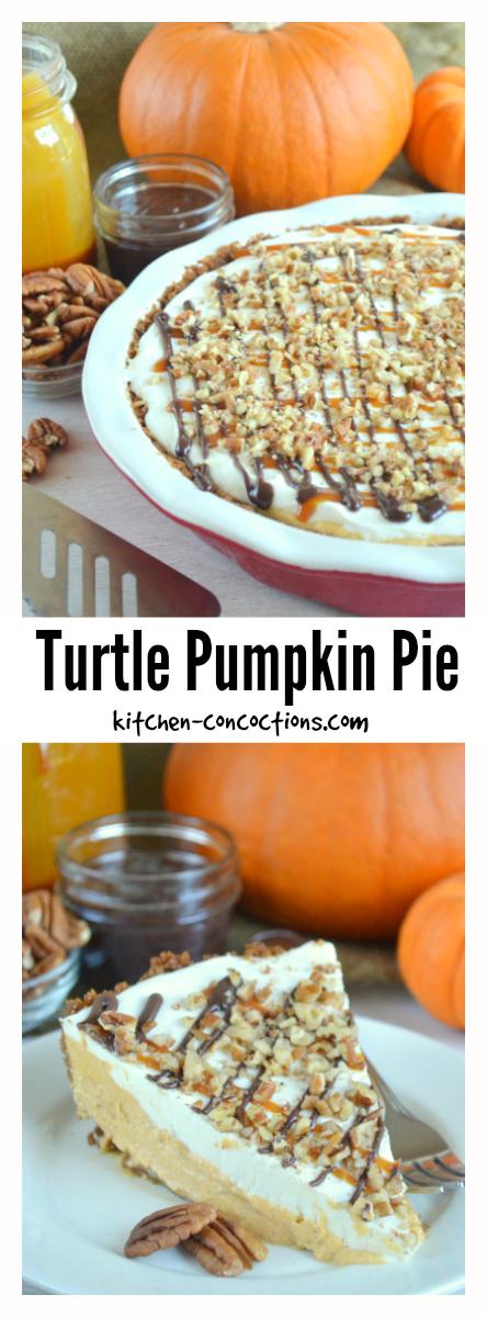 Turtle Pumpkin Pie