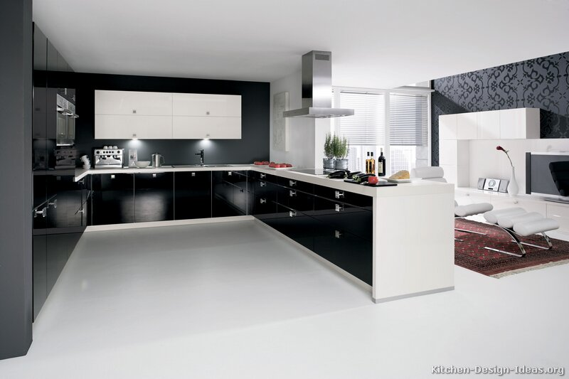 A Black and White Kitchen with Contemporary Cabinets