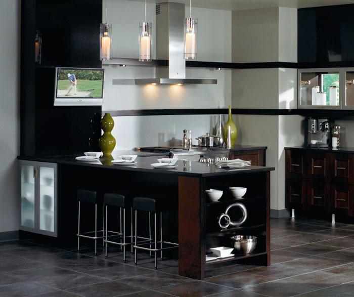 Contemporary Kitchen Cabinets in Espresso Finish  Kitchen
