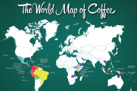 the world map of coffee