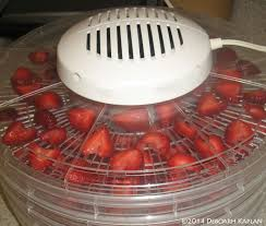 How-to-Dry-Fruit-in-a-Dehydrator