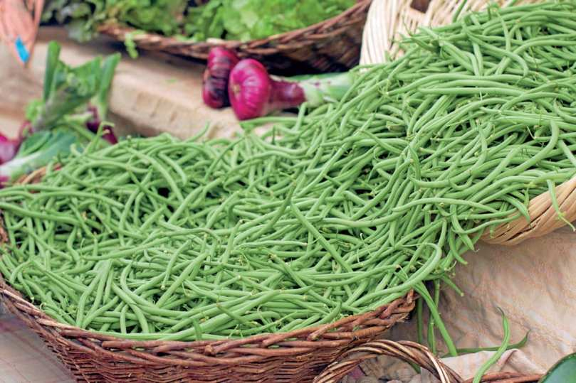 A basket filled with French Beans.