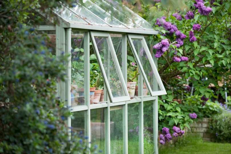 The side of a greenhouse with the windows open.