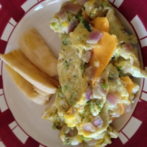 Steamed Broccoli Omelet