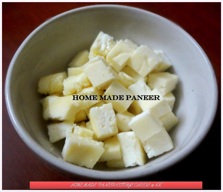 Home made Paneer /Cottage Cheese