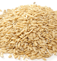 oat groats [ 1000 x 1000 Pixel ]