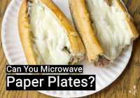 Can You Microwave Paper Plates? | KitchenSanity