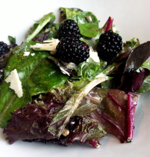 Summer salad Elixier Restaurant White River Junction Vermont dining review