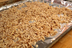 blanched walnuts