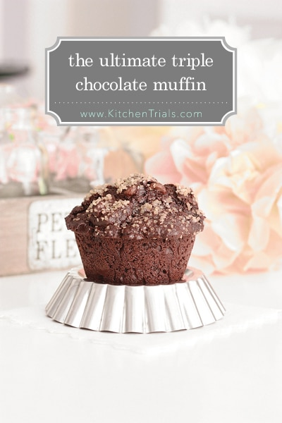 ultimate tripple chocolate muffin pin