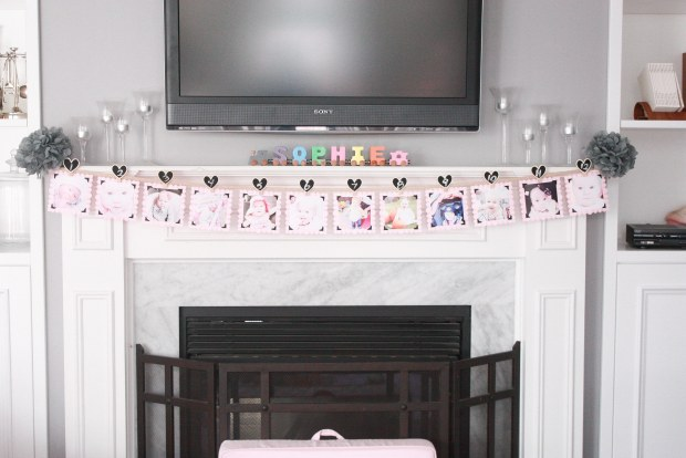 vintage pink party photo banner 5