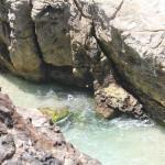 Point Lookout Stradbroke Island Australien Steilküste