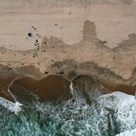 Coast Guard: California oil spill likely 25,000 gallons – ABC News