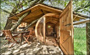 cabanes en bois dans les arbres