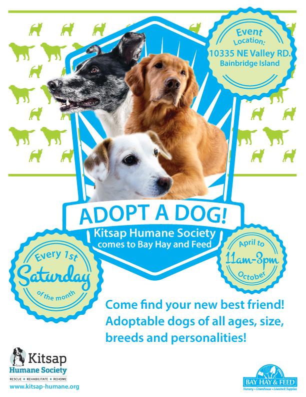 Kitsap Humane Society Autos Post