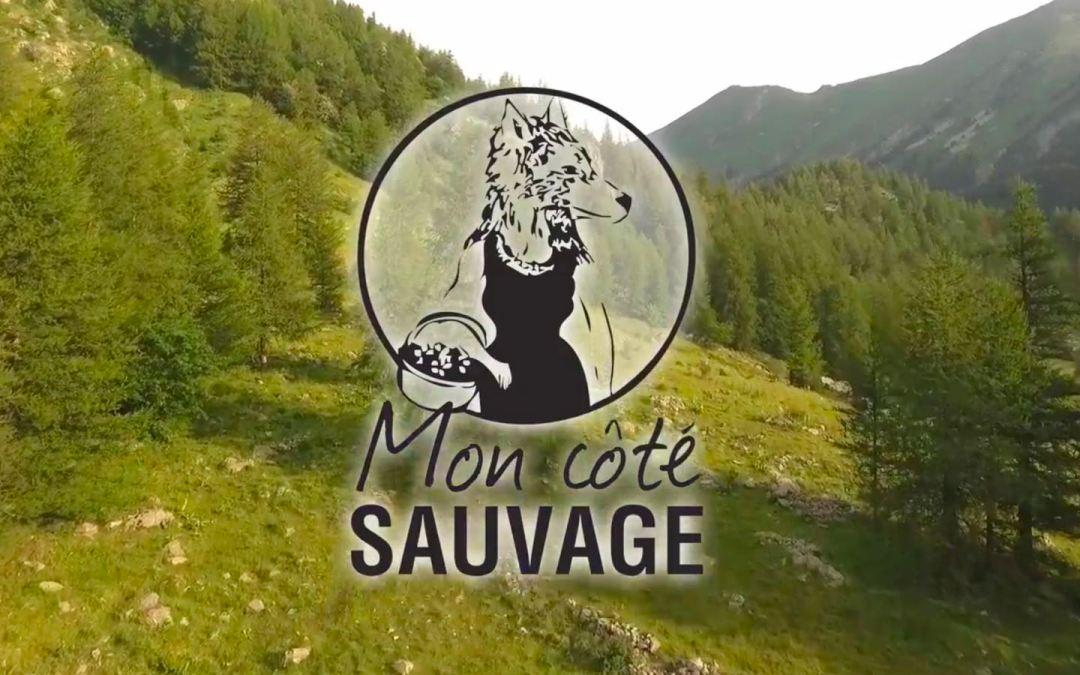 Kit Sechoir Solaire dans «Mon côté sauvage»