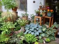 Woman with trowel: The joys of patio gardening  Kitsilano.ca