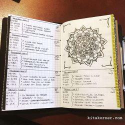 Jan 2-8 : Daily-Weekly Spread in my Mandala (BuJo) Journal…..