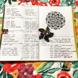 Jul 9-15 in my Mandala (BuJo) Journal..