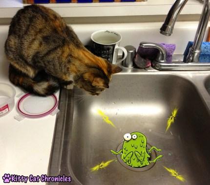 Delilah Sink Cat