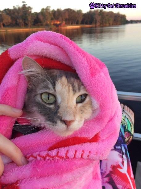 Wordless Wednesday: Welaka, Sophie on a boat