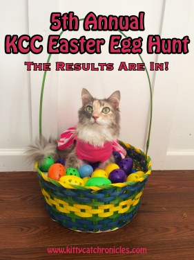 The 5th Annual KCC Easter Egg Hunt: The Results Are In!
