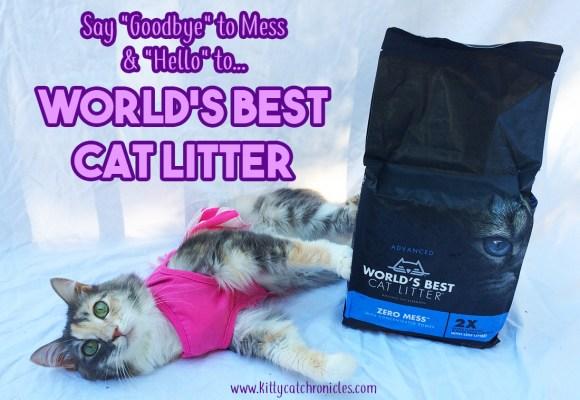 "Say ""Goodbye"" to Mess and ""Hello"" to World's Best Cat Litter | #alitterbitamazing"