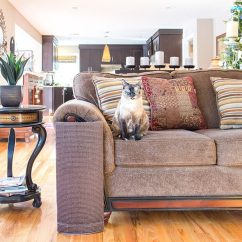 Best Sofa Material For Cat Owners How To Keep Your Dog Off The Scratcher Scratching Post Review Kitty Loaf
