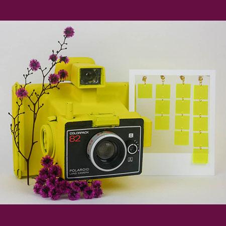 photo_miniature_georgette_jaune_fluo