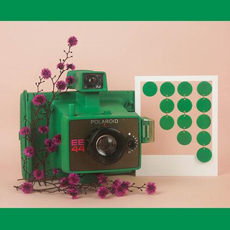 photo_miniature_paulette_vert