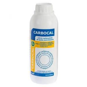 carbocal antimarciume bonsai
