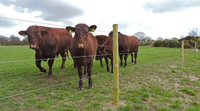 farm-and-estate-management-001