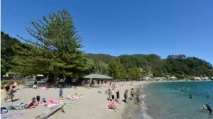 Eastbourne Picnic - Things to do in Wellington