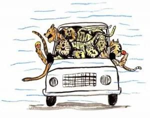 soda pop tigers