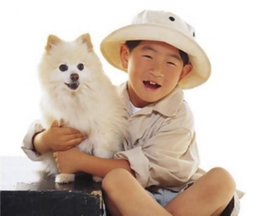 Hunde 4