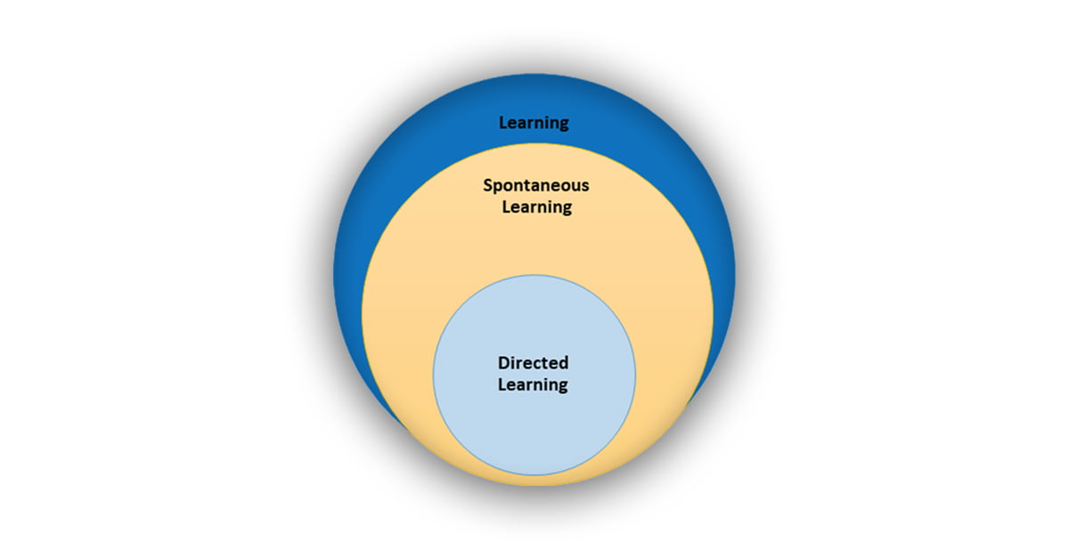 How Does Learning Occur?