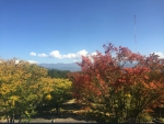 長野県伊那文化会館から春日公園