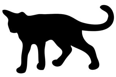 Katteplage - 6 gode råd som får katten vekk fra blomsterbedet