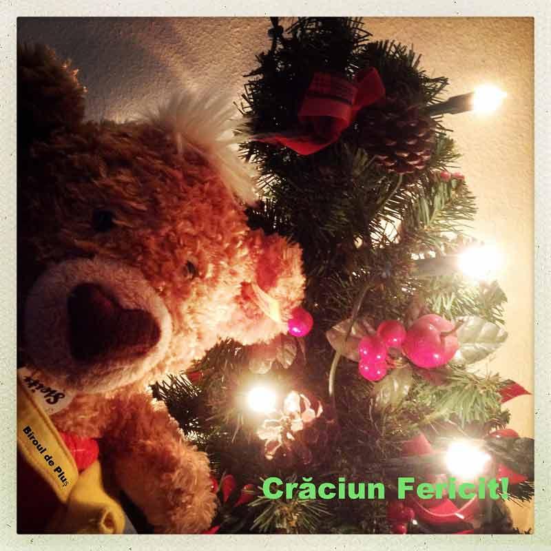 Crăciun Fericit și Pufos!