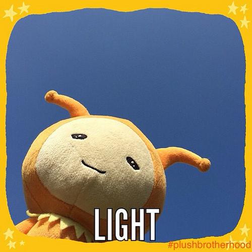 Light - The Plush Brotherhood
