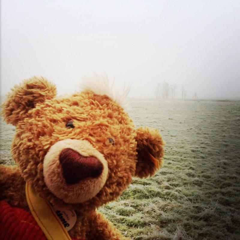 Ceață deasă